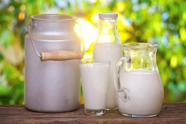 Молоко – пить или не пить