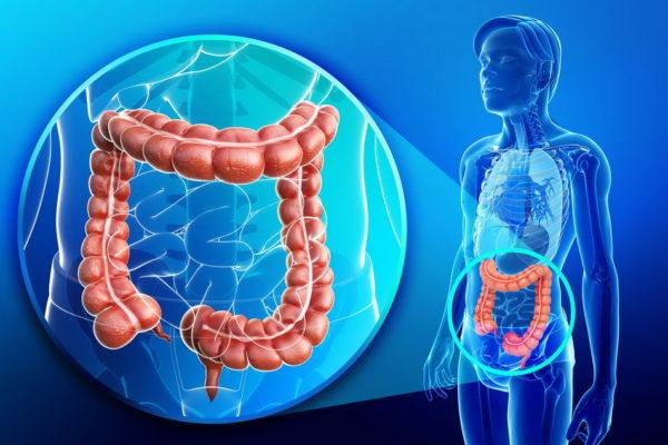Рак толстой кишки – как понять, что организм сигнализирует о проблеме