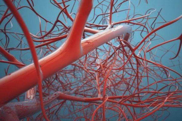 Болезнь периферических артерий – способы определения опасного последствия диабета